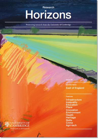 Cover of Research Horizons issue 38